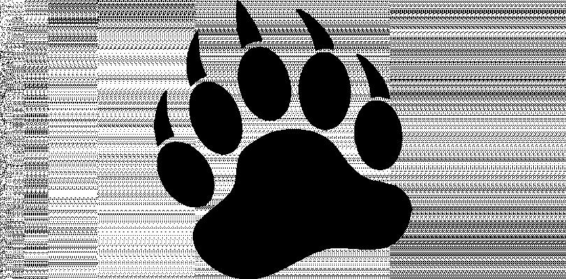 Kokanee Elementary Logo